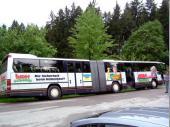 Auch dieses Mal haben wir wieder einen Bus mit Verlängerung. über 70 Leute waren mit von der Partie.