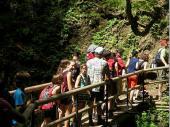 DieWanderung zum Lainbach-Wasserfall war anstrengend - auch wenn der überwiegende Teil im Schatten zu bewältigen war. Die Sonne heizte schon am Vormittag ordentlich ein.