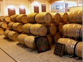 Die Faßhalle – schade, dass man Gerüche nicht auf einer Internetseite abbilden kann. Der Geruch nach Eichenfässer und Whisky ist überwältigend und verführerisch zugleich.