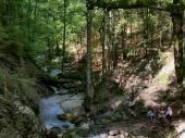 Dem Bach entlang aufwärts ging es durch eine schattige Landschaft, die nicht nur gut zu gehen sondern auch wunderschön ist.