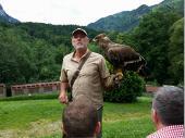 Hier der Falkner mit einem jungen Adler.