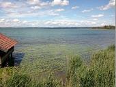 Die Spaziergänger genossen das Plätschern des Sees und das bezaubernde Chiemsee-Ufer.