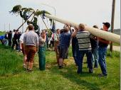 Ohne maschinelle Hilfe soll der Baum heuer aufgestellt werden.