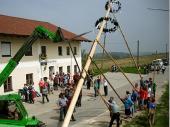 24 Meter frisches Holz lassen sich schon drücken.Vielen Dank an den Hoida, der ihn gestiftet hat.