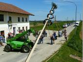 Es haben sich viele Leute in Steinbach eingefunden, um bei schönem Wetter den Baum in die Höhe zu bringen.